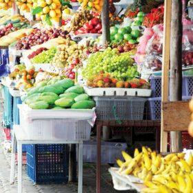 Lấy sỉ trái cây ở đâu giá tốt